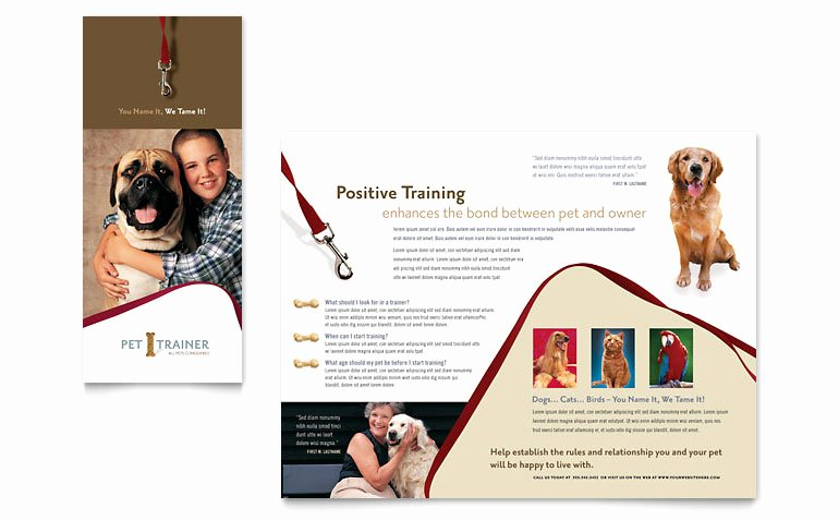 Training Flyer Template Free Lovely Pet Training & Dog Walking Brochure Template Word