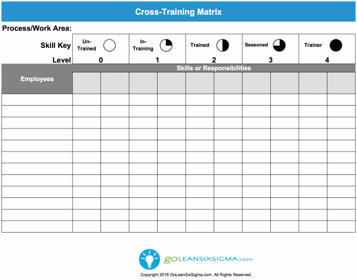 Training Matrix Template Free Excel Inspirational Cross Training Matrix Template & Example