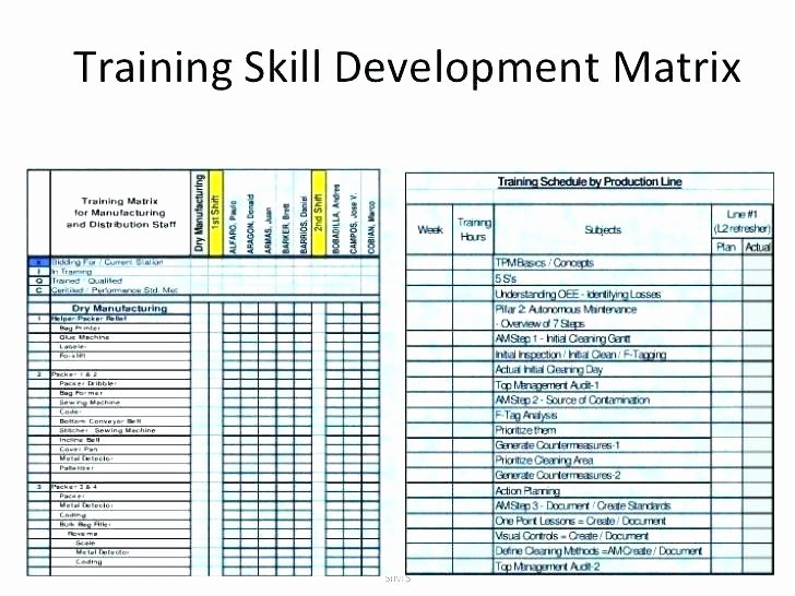 Training Matrix Template Free Excel Unique Curriculum Matrix Template Training Matrix Example Excel