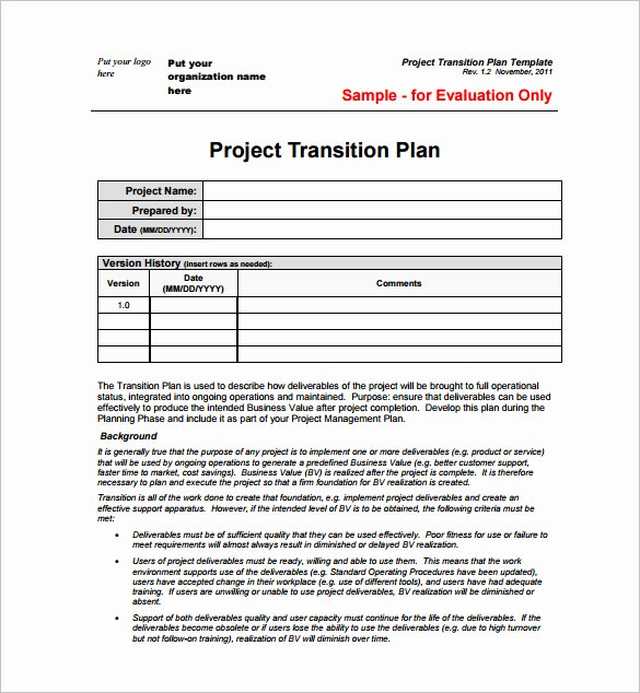 Transition Management Plan Template Best Of 23 Project Plan Template Doc Excel Pdf
