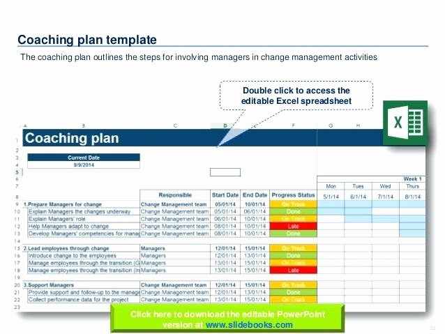 Transition Management Plan Template Fresh Change Plan Management Strategy Process organizational