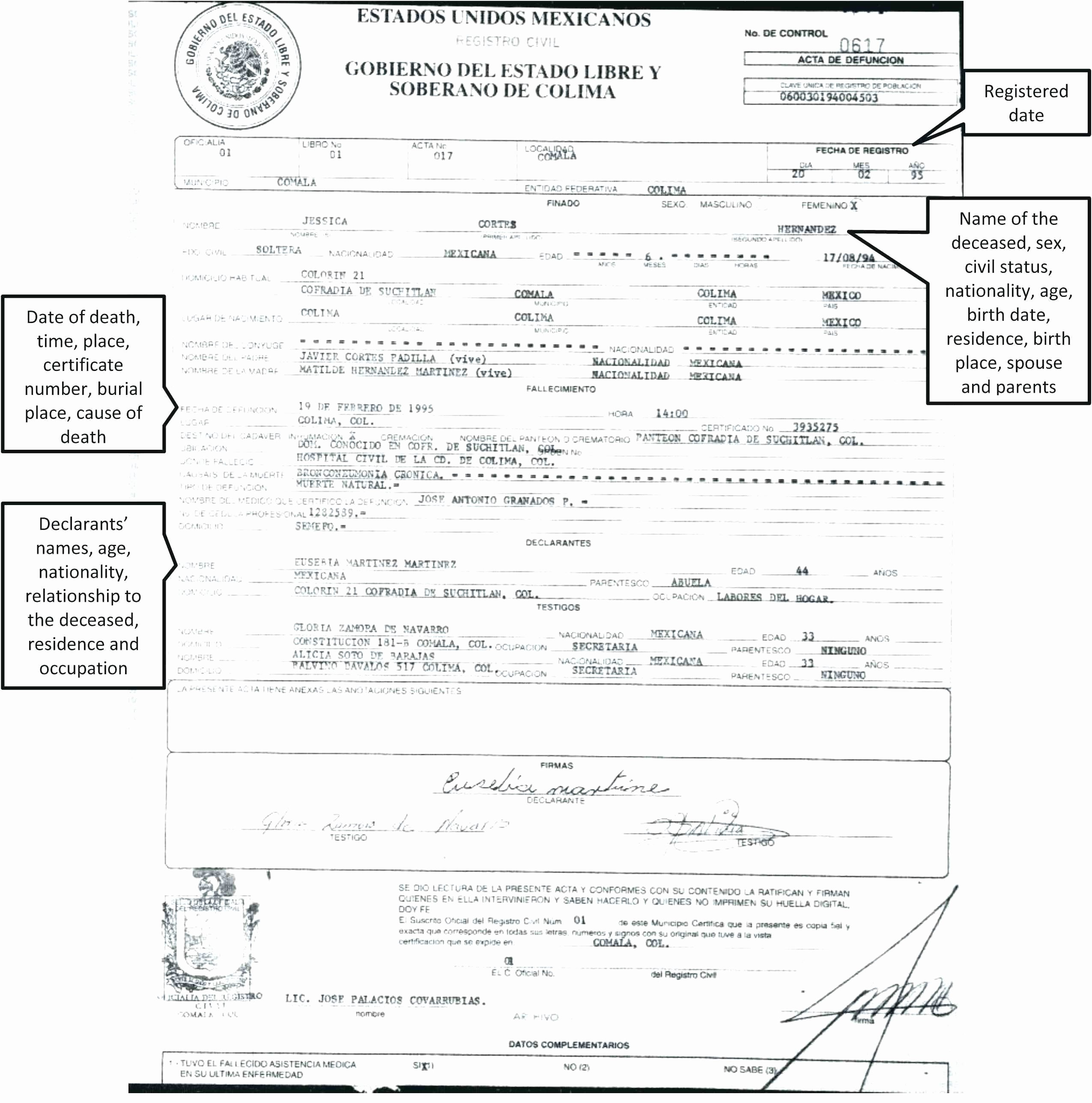 Translation Of Divorce Certificate Template Awesome Mexican Divorce Certificate Translation Template Sample