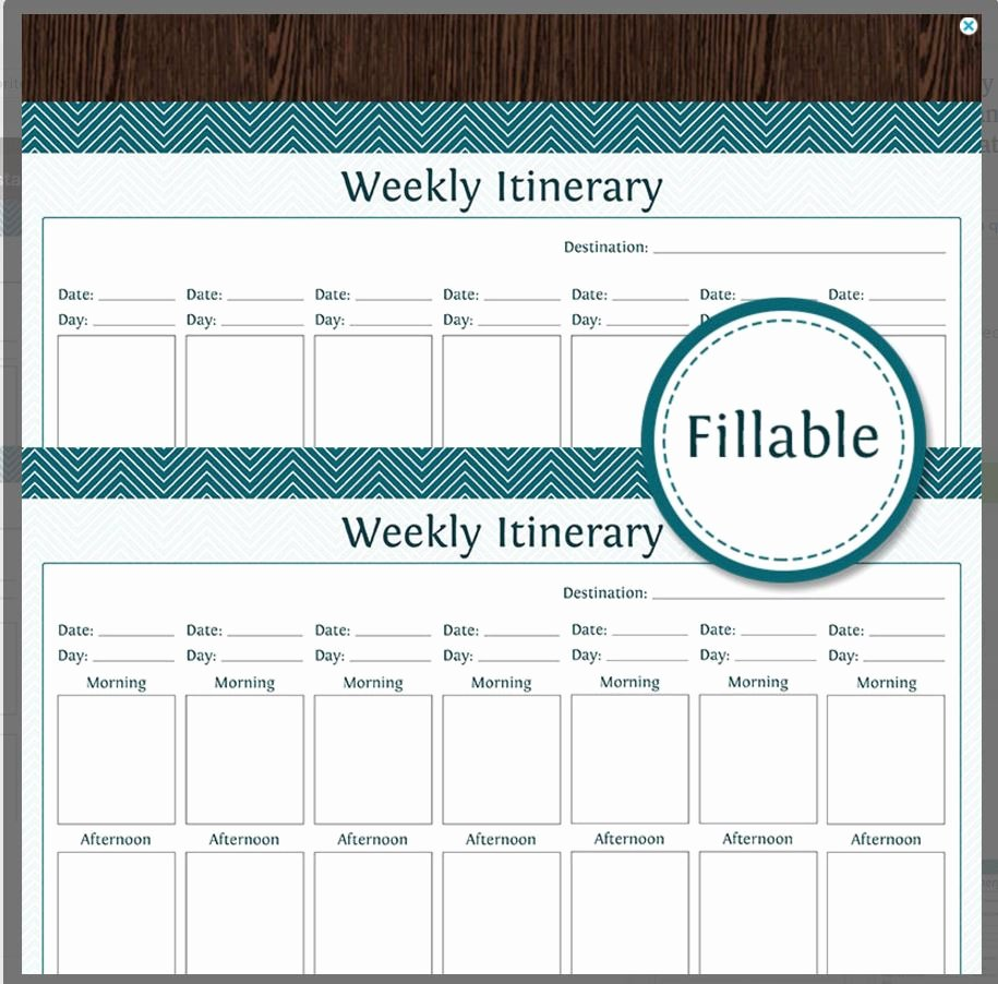 Travel Itinerary Planner Template Awesome 10 Itinerary Template Examples