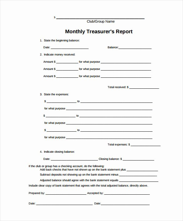 sample treasurer report
