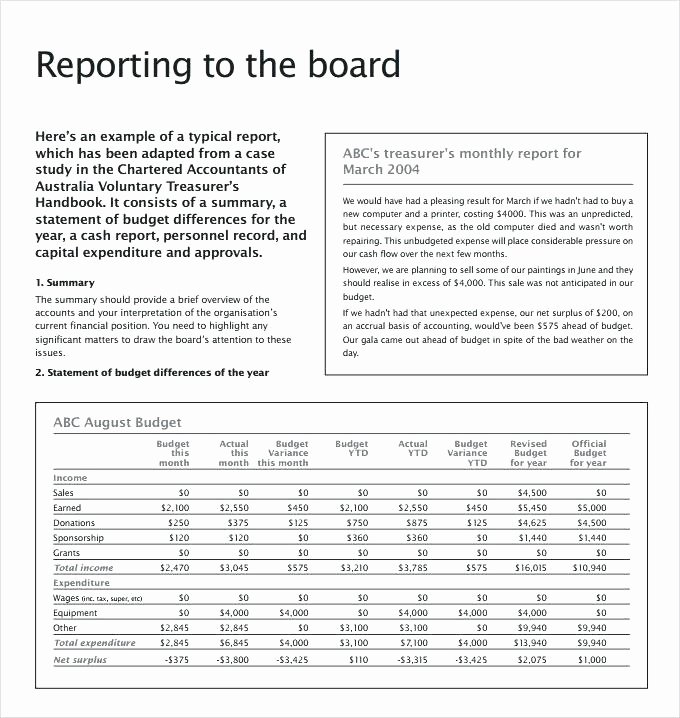 Treasurer Report Template Excel Luxury Non Profit Treasurer Report Template From soap Example