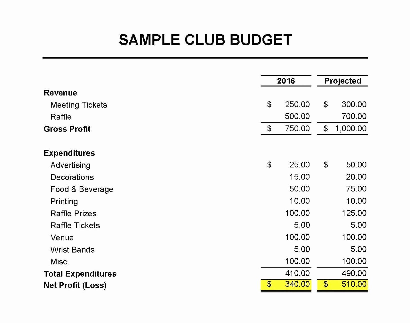 Treasurer Report Template Non Profit Inspirational Pto Treasurer Non Profit All Treasurers Report Template