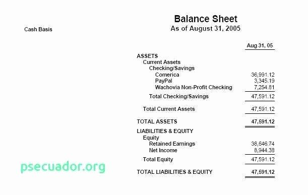 Treasurer Report Template Non Profit New Monthly School Council Treasurers Report Non Profit