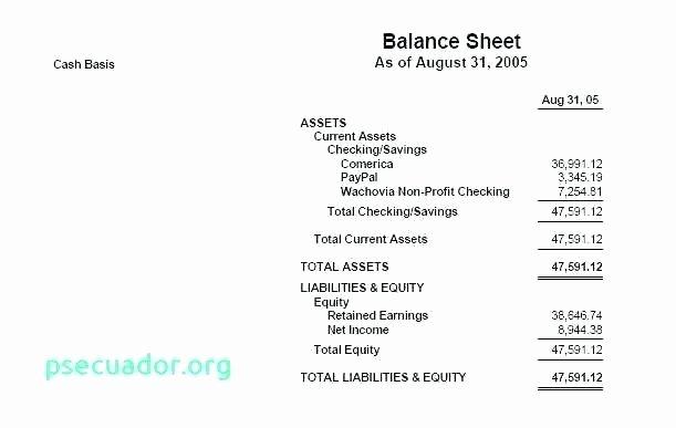 Treasurer Report Template Non Profit New Treasurers Report Template Non Profit Best Site Pdf Nz