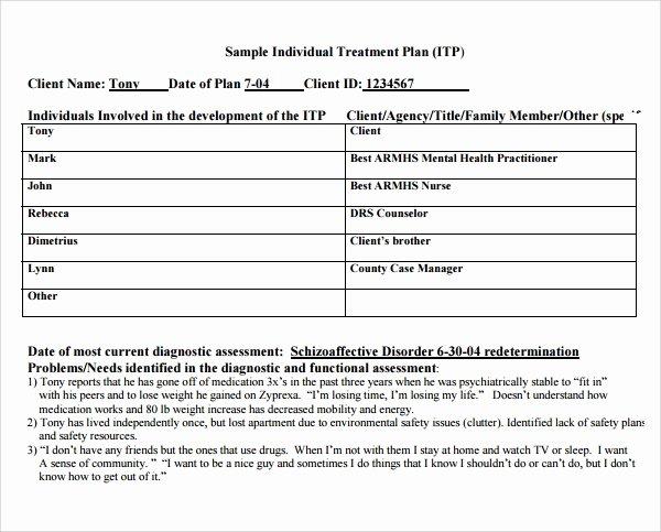 Treatment Plan Template Mental Health Beautiful 8 Treatment Plan Templates