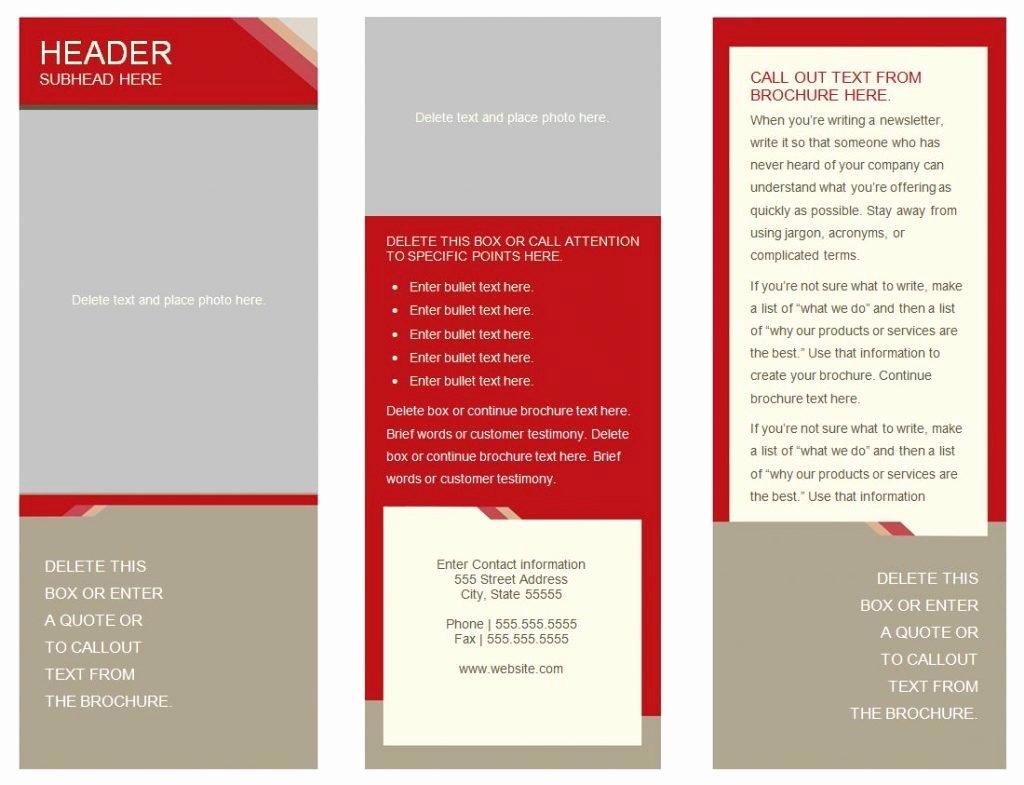 Tri Fold Brochure Free Template Elegant Brochure Templates Word Mughals