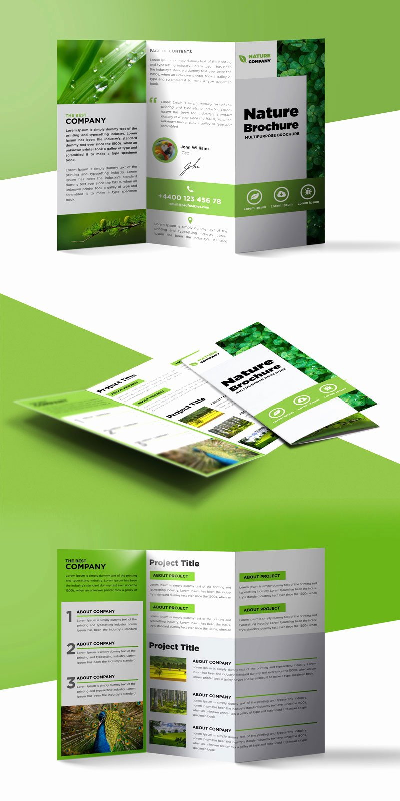 Tri Fold Brochure Free Template Unique Nature Tri Fold Brochure Template Free Psd