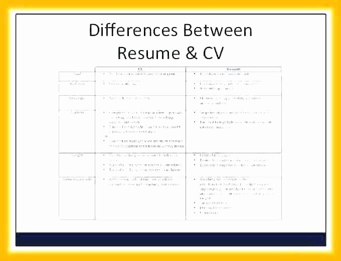 Undergraduate Resume Template Word Awesome Undergraduate Cv Template Undergraduate Resume Template