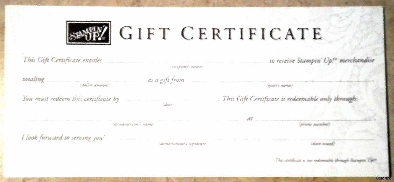 Vacation Gift Certificate Template Unique Template Vacation Certificate Template