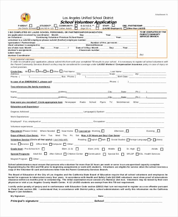 Volunteer Application form Template Beautiful 41 Application Templates In Pdf
