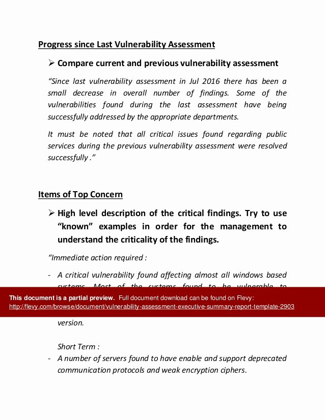 Vulnerability assessment Report Template Beautiful Vulnerability assessment Executive Summary Report Template