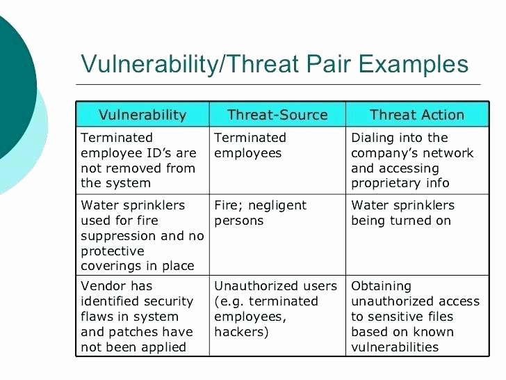 Vulnerability assessment Report Template Elegant Security Risk assessment Template Vulnerability Report