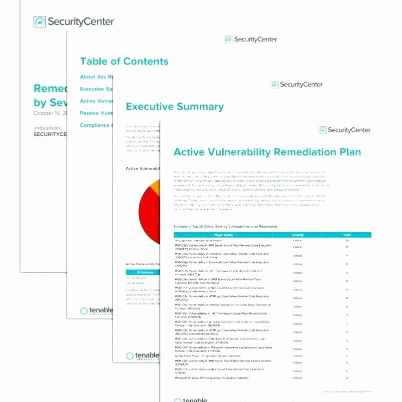 Vulnerability assessment Report Template Lovely Security Risk assessment Template Vulnerability Report