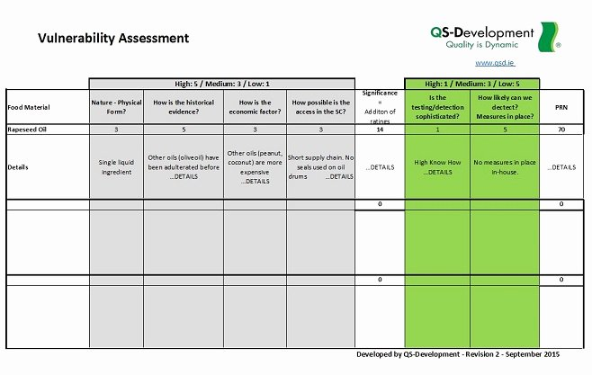 Vulnerability assessment Report Template New Vulnerability assessment Template