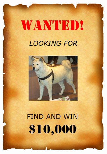 Wanted Poster Template for Word Inspirational Wanted Poster Template Pdf Driverlayer Search Engine