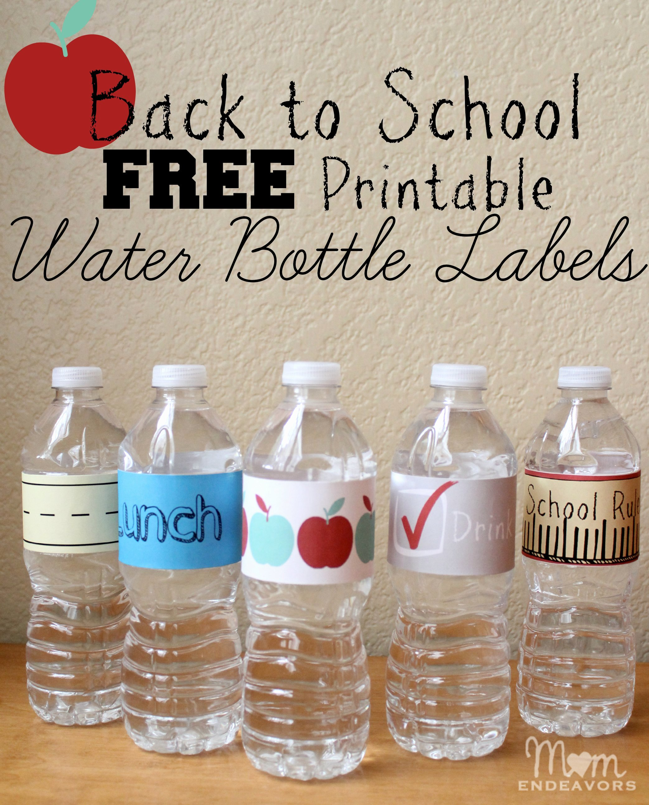 Water Labels Template Free Luxury Printable Frozen Bottle Labels Free