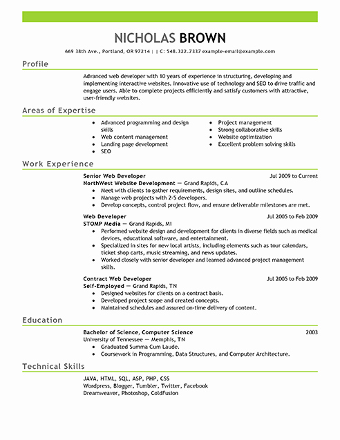 Web Developer Resume Template Lovely Best It Web Developer Resume Example