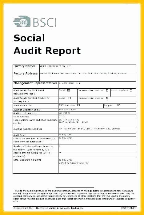 Website Audit Report Template Beautiful Sample Hr Audit Report Template