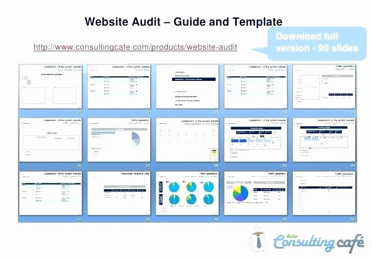 Website Audit Report Template Luxury Audit Template Excel Audit Templates Financial Audit