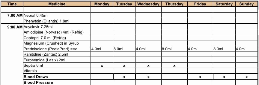Weekly Medication Schedule Template Lovely 6 Medication Intake Schedule Templates – Word Templates