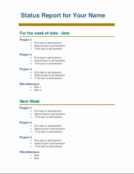 Weekly Project Status Report Template Beautiful Employee Weekly Status Report