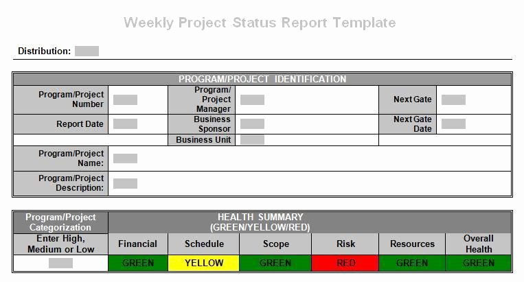 Weekly Project Status Report Template Lovely Tronmaster On Project Weekly Status Report
