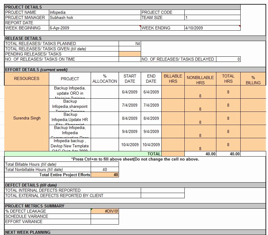 Weekly Report Template Excel Beautiful Weekly Status Report Template Professional Business