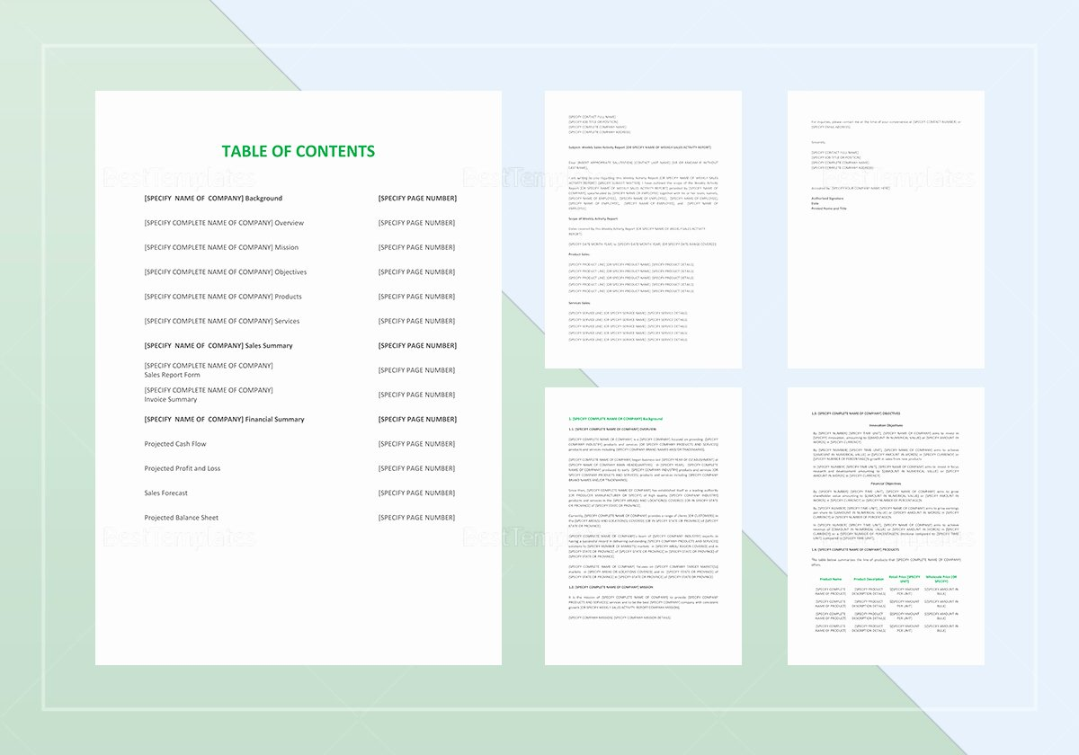 Weekly Sales Activity Report Template Lovely Weekly Sales Activity Report Template In Word Google Docs