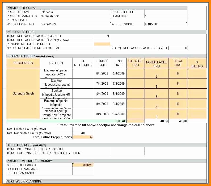 Weekly Status Report Template Excel Beautiful Daily Status Report format Daily Status Report Template