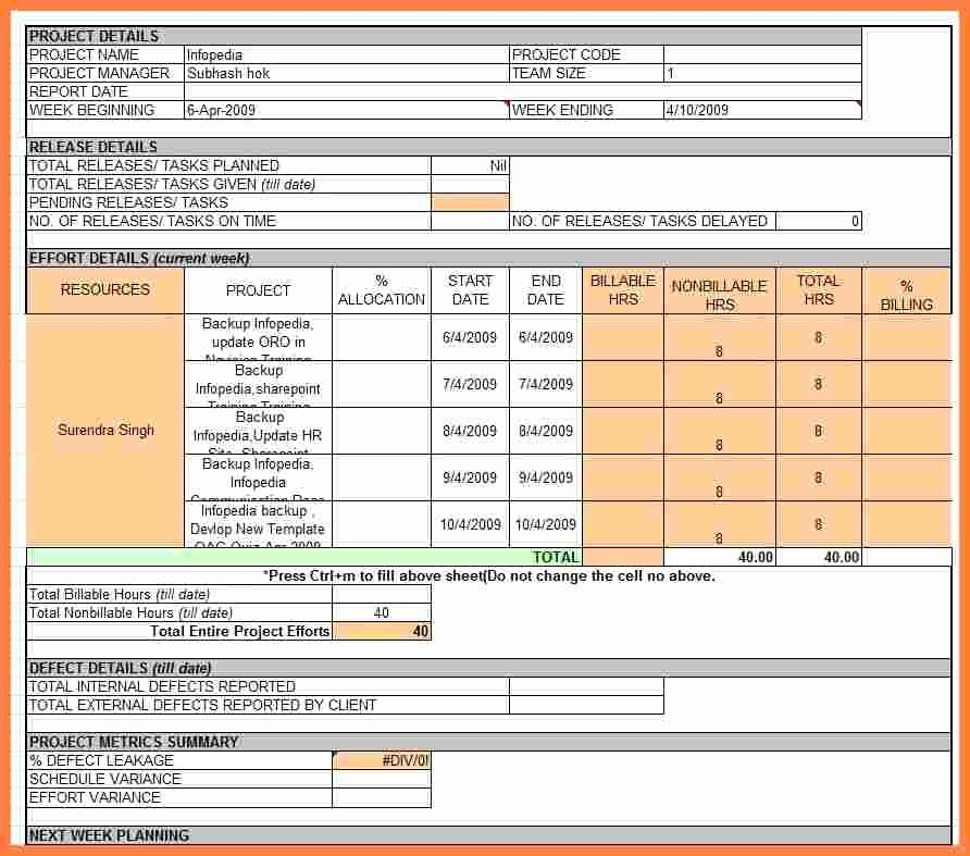 Weekly Status Report Template Excel Elegant 6 Employee Weekly Status Report Template