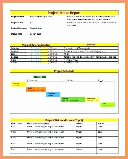 Weekly Status Report Template Excel Lovely Project Management Weekly Status Report Template Ppt to