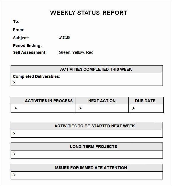 Weekly Status Report Template Word Elegant Weekly Report Template
