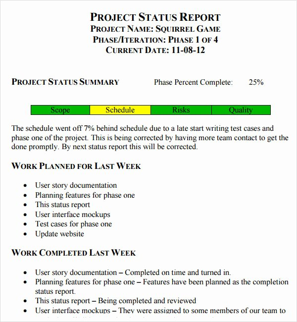 Weekly Status Report Template Word Lovely 14 Sample Useful Project Status Report Templates