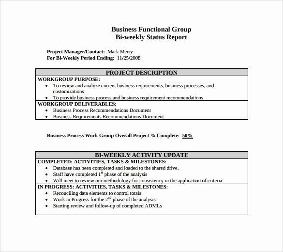 Weekly Status Report Template Word Luxury Sample Weekly Status Report 7 Documents In Pdf Word