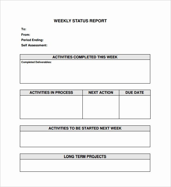 Weekly Status Report Template Word Unique Sample Status Report Template