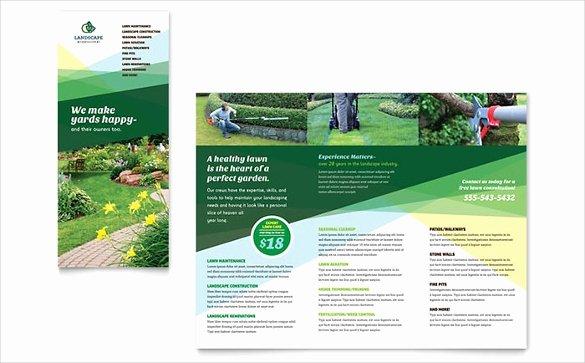 Word Doc Brochure Template Best Of Brochure Template Word 41 Free Word Documents Download