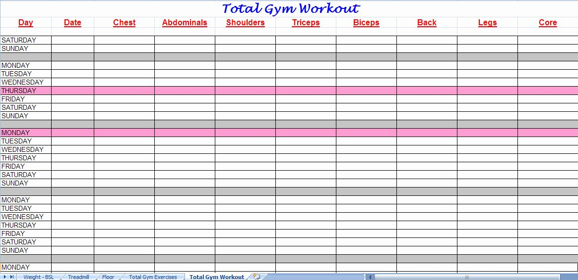 Workout Schedule Template Excel Luxury 3 Excel Workout Templates Excel Xlts
