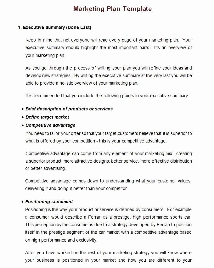 Yearly Marketing Plan Template Beautiful Small Business Marketing Plan Template